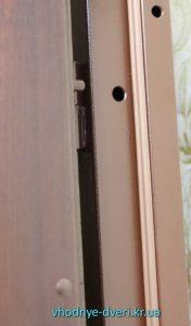 Фото входной двери Элит+ с уплотнителем и антисрезами
